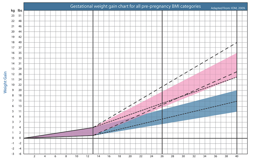 Pregnancy Weight Gain Chart Kg Rebellions