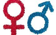 male female sex symbols